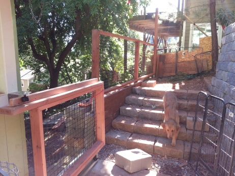 the gate and steps Randy built