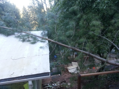 it hit our roof, but no biggie!