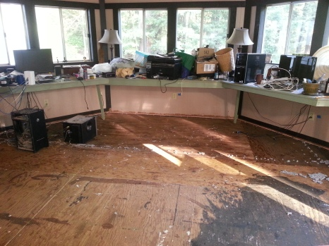 the plywood floor underneath