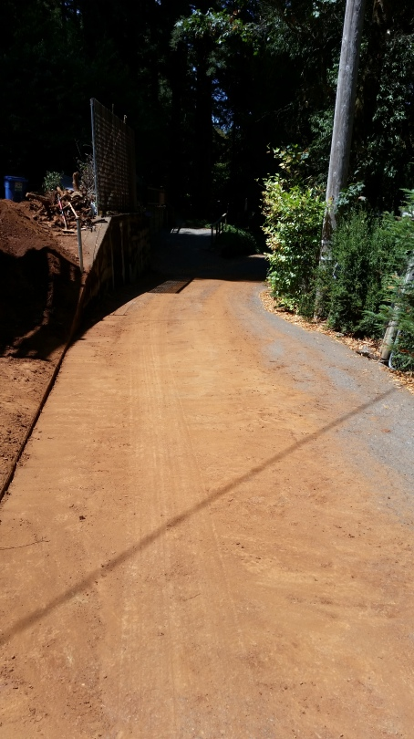 and the dirt on our street- sorry neighbors! I spent about 2 hours sweeping the dirt up after this.