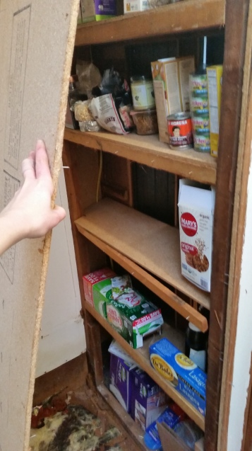 on the other side of our shower wall was our teeny tiny pantry- bye bye!